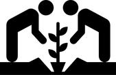 students plant saplings
