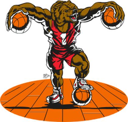 Basket ball bear