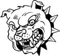 ferocious bull dog