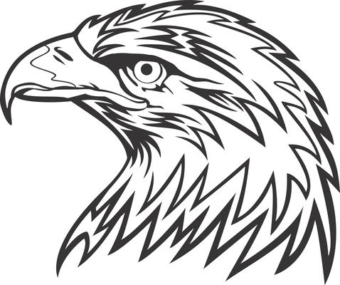sharp beak eagle