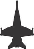 fat tailed jet