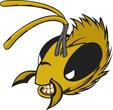 Bee mascot head