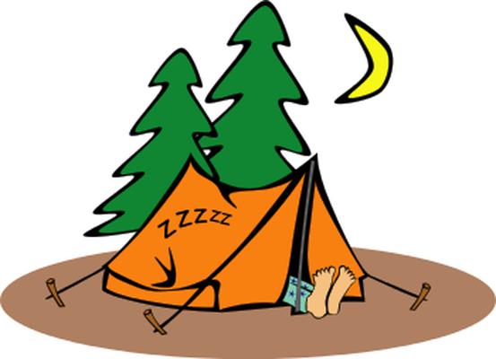 camp near pine trees